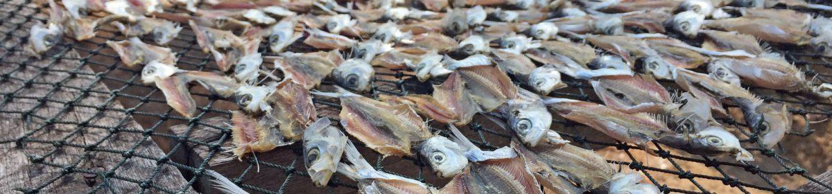 Ikan Kering